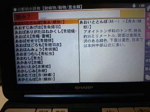 電子辞書の大辞林
